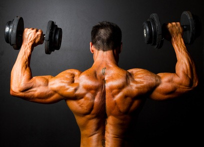Lean muscle growth